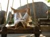 yoga-thailand003_02_0
